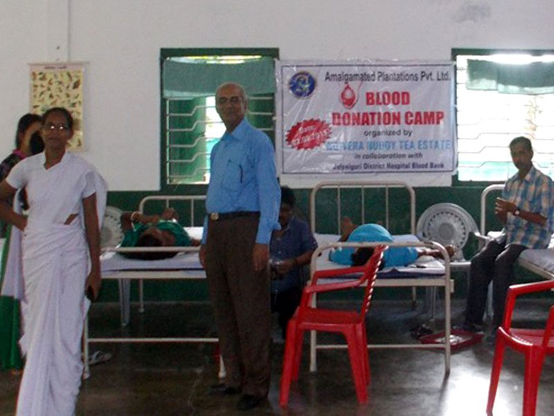 Voluntary Blood Donation Camp at Nowera Nuddy Tea Estate