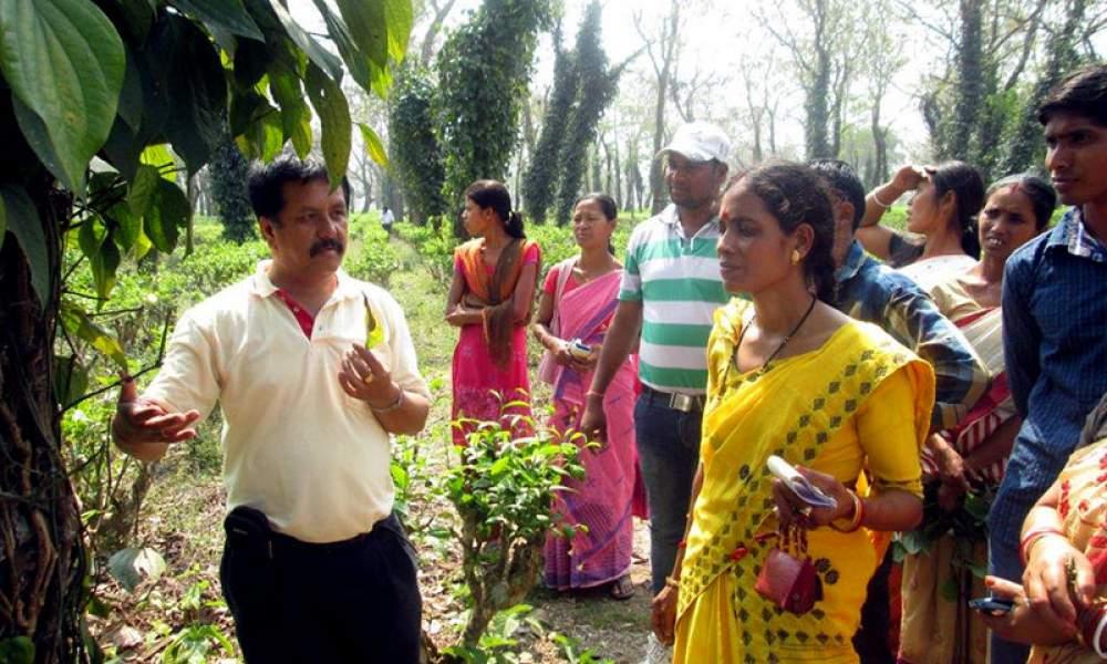 Women Farmer Training